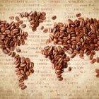 asal mula kopi
